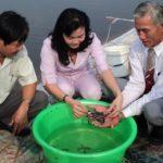 Mô hình nuôi cá biển trong ao đất - 5722104d94e44 150x150