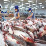 Nghịch lý tiêu chuẩn hải sản vào siêu thị Việt khó hơn xuất châu Âu? - nghich ly tieu chuan hai san vao sieu thi viet kho hon xuat chau au 150x150