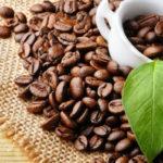 Xuất khẩu cà phê tiếp tục giảm - xuat khau ca phe tiep tuc giam 150x150