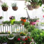 Ban công đẹp rộn ràng với các loại cây hoa nở quanh năm