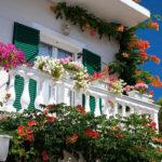 Tổng hợp các cách trồng hoa đẹp trên ban công