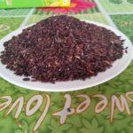 Trồng lúa thảo dược cho thu nhập cao - trong lua thao duoc cho thu nhap cao 3 150x150